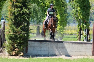 TREC satigny  (Photo Nicole Vonlanthen)
