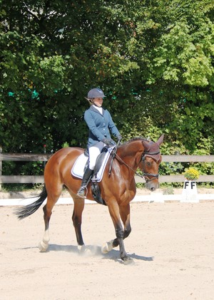 Photos Dressage Onex
